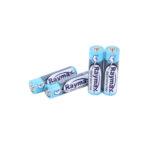 Батарейка RAYMAX R03 AAA shrink 4 (5735071)